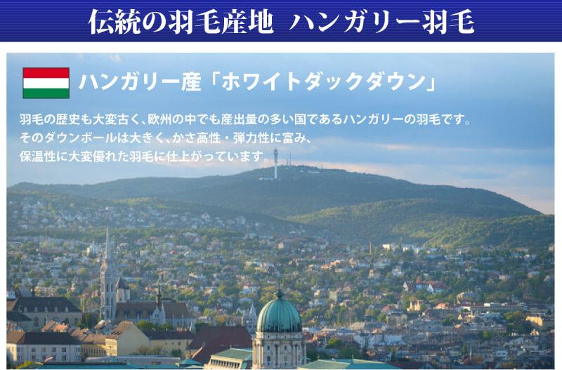 西川リビング 羽毛布団 シングルロング ハンガリー産 ホワイトダックダウン90% 特価